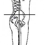 Ideal posture from the right side